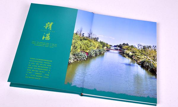 公园宣传册设计如何令人耳目一新